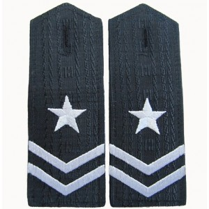 Two strips custom military epaulets