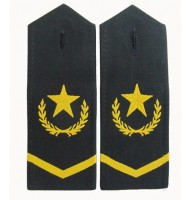 Military garment embroidered epaulets